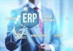 Dynamics NAV ERP Estimate