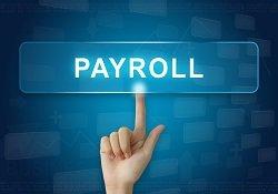 Microsoft Dynamics NAV Payroll